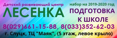 "Детский развивающий центр ""Лесенка"""