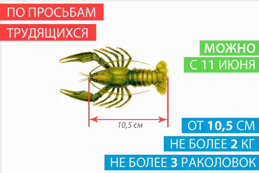 период ловли раков в беларуси