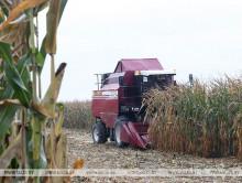 Посещая Слуцкий район, Лукашенко высказался о важности заготовки овощей и фруктов