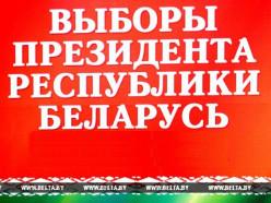 ВЫБОРЫ-2015. В Беларуси начинается период предвыборной агитации