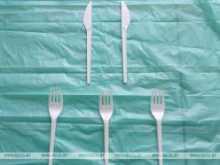 МАРТ предлагает запретить одноразовые пластиковые вилки, ложки и ножи в общепите с 2021 года