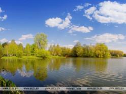 До +29°С и в основном без осадков будет в Беларуси 25 июня