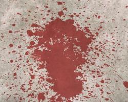 Жестокое убийство в Слуцком районе: женщине нанесли 100 ударов
