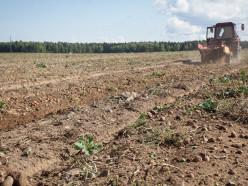 Лукашенко подписал указ о спасении убыточных колхозов