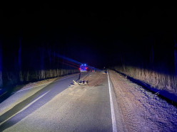 В Минской области снова насмерть переехали лежащего на дороге человека