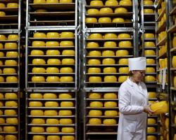 «Слуцкий сыродельный комбинат» перечислит часть прибыли в фонд национального развития