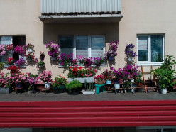 Окна, которые украшают Слуцк. Доброе видео