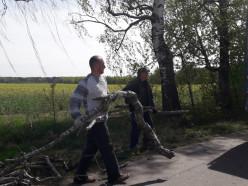 Четверо жителей деревни Дальние Бондари убрали аллею между колхозных полей