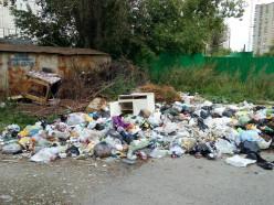 Случчан просят сообщить о несанкционированных свалках мусора