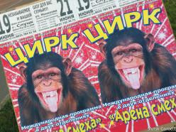 19-21 июня в Слуцке будет работать цирк