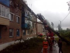 В Греске дерево упало на дом