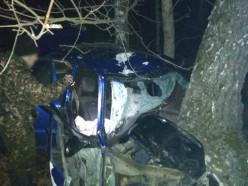 Машина в хлам. Под Солигорском нетрезвый бесправник на Honda вылетел в придорожное дерево