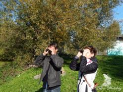 Понаблюдали за птицами