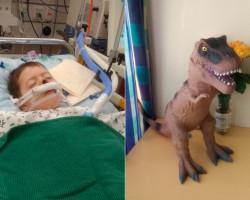 Елисею Серому сделали вторую операцию, мальчик находится в реанимации