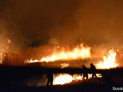 Неизвестные подожгли траву неподалёку от жилых домов в Новодворцах. Видео