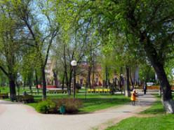 Весной в Слуцке посадят более 800 деревьев