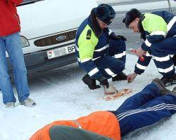Случчане в Хойниках украли дорожный маненкен