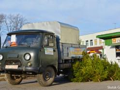 В Слуцке начали работать ёлочные базары
