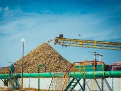 В ОАО «Слуцкий сахарорафинадный комбинат» начали переработку сахарной свеклы нового урожая