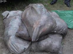 Жителям Слуцка грозит уголовная ответственность за рекордное количество выловленной рыбы