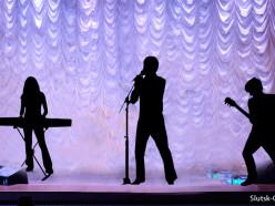 В Слуцком ГДК пройдёт благотворительный концерт звёзд белорусской эстрады в помощь Елисею Серому (обновлено)