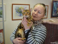 В Слуцке пройдёт выставка кошек