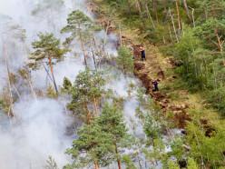16-17 августа может установиться критический уровень пожарной опасности