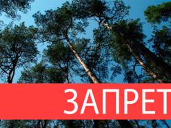 Посещение лесов всё ещё под запретом