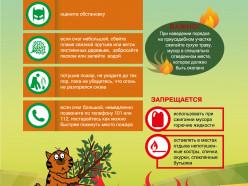 Слуцкий РОЧС напоминает об ответственности за выжигание сухой растительности