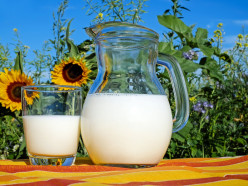 Российские кондитерские компании просят вернуть белорусское молоко, угрожая ростом цен