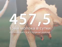 Слуцкий район прозводит больше всех в Минской области молока