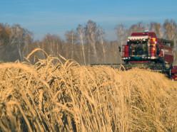 Слуцкий район лидирует в области по намолоту зерна