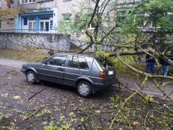От непогоды пока сильнее всего пострадала Брестская область (обновлено)