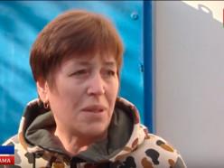 «Беларусь-1» о нападении ос на людей в Слуцке. Видео