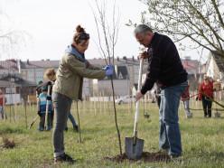 На республиканском субботнике в микрорайоне Чехова высадили будущий парк
