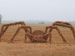 В Клецком районе на поле установили огромного паука из соломы