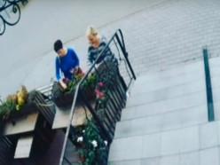Разыскиваются женщины, похитившие цветы у кофейни «Про кофе»