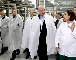 Президенту объяснили разницу стоимости российского и белорусского сахара