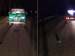 В Солигорском районе под машину попал не обозначенный пешеход