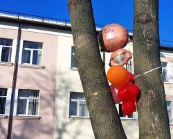 24-летний житель Лучников повредил окно роддома, временно закрытого на мойку