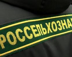 Россельхознадзор запретил ввоз продукции из филиала Слуцкого сыродельного комбината