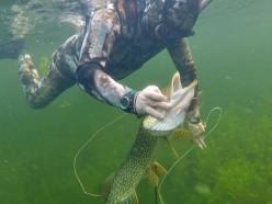 На реке Сивельга погиб подводный рыбак из Слуцка и спасатель, который пытался его достать