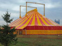 В начале августа в Слуцк снова приедет цирк