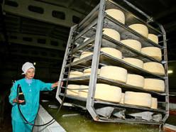 Слуцкий сыродельный комбинат увеличивает поставки в Россию на 30%