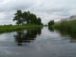 На Случи при купании погибла 20-летняя жительница Слуцка