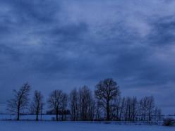 На выходных в Беларуси может выпасть первый снег
