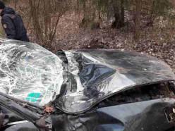 В Слуцком районе водитель авто не справился с управлением и врезался в дерево