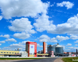 Слуцкий сахарорафинадный комбинат начал переработку отечественного сырья в межсезонье