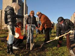 В республиканском субботнике в Беларуси приняли участие более 3 млн человек