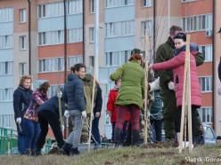 Субботник: вдоль улицы Тройчанской высадили три вида деревьев